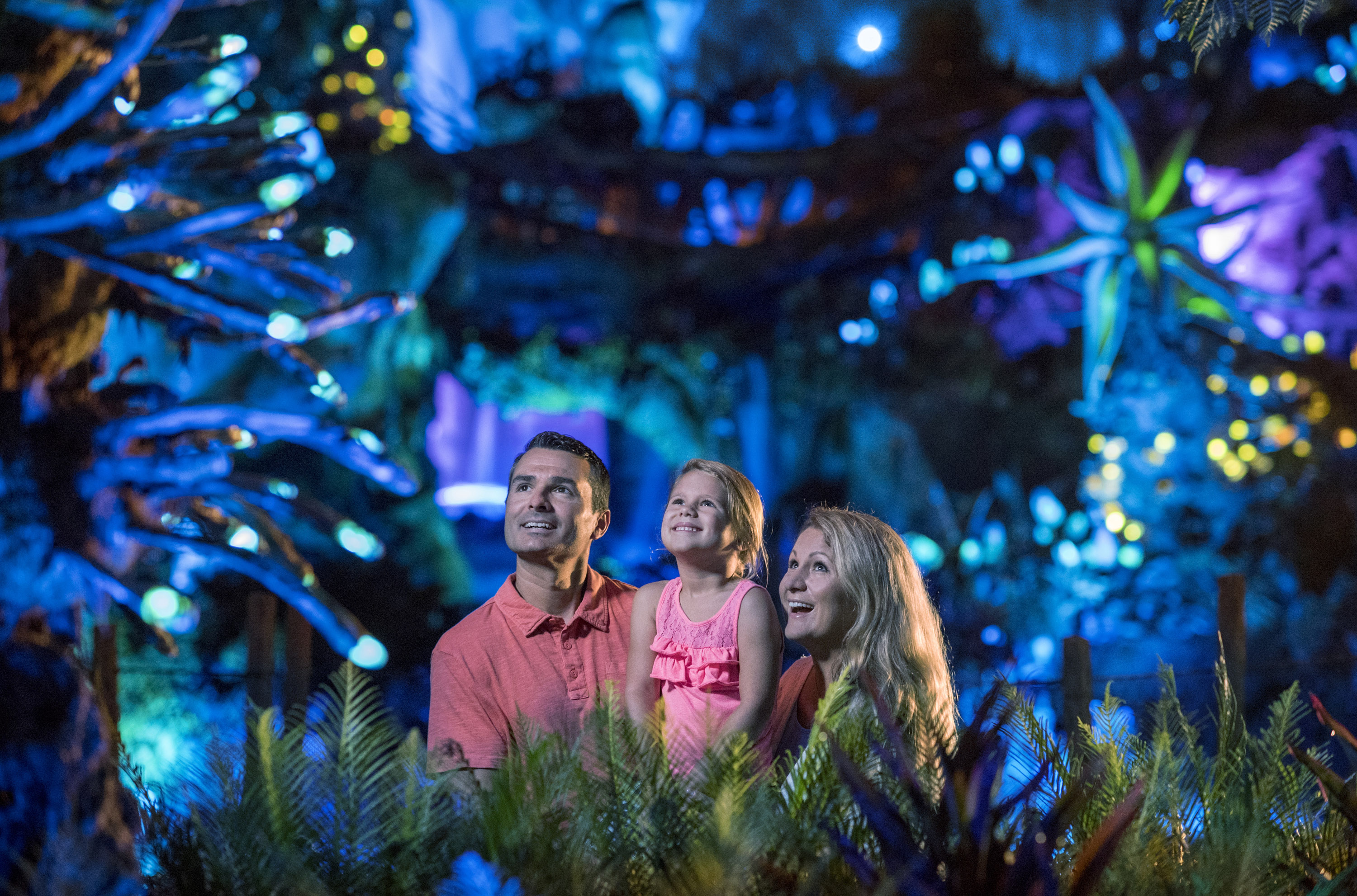 Top 5 Tips for Disney's Animal Kingdom Magic that Don't Cost Extra featured by top US Disney blogger, Marcie and the Mouse: For the ultimate Disney's Animal Kingdom magic moment, head to Pandora at nigthttime.