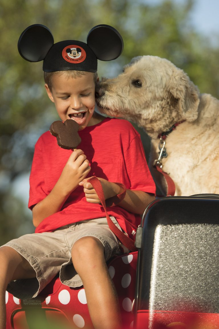 How to Bring a Pet at Walt Disney World, tips and tricks featured by top US Disney blogger, Marcie and the Mouse: Walt Disney World Resort welcomes guests – and their canine companions – to four resort hotels: Disney's Yacht Club Resort, Disney Port Orleans Resort – Riverside, Disney's Art of Animation Resort and the cabins at Disney's Fort Wilderness Resort & Campground.