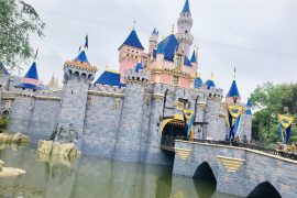 Disneyland on a Budget: tips and tricks for a Disneyland Family Vacation under $1000 featured by top US Disney blogger, Marcie and the Mouse: How to do Disneyland on a Budget