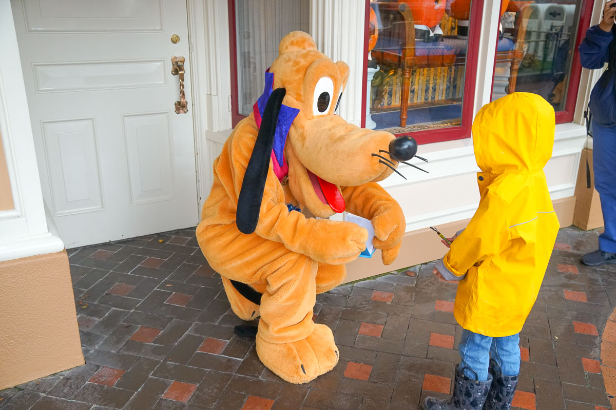 What to Do at Disneyland in the Rain, tips featured by top US Disney blogger, Marcie and the Mouse: Pluto signing a boy's autograph book at Disneyland while it's raining