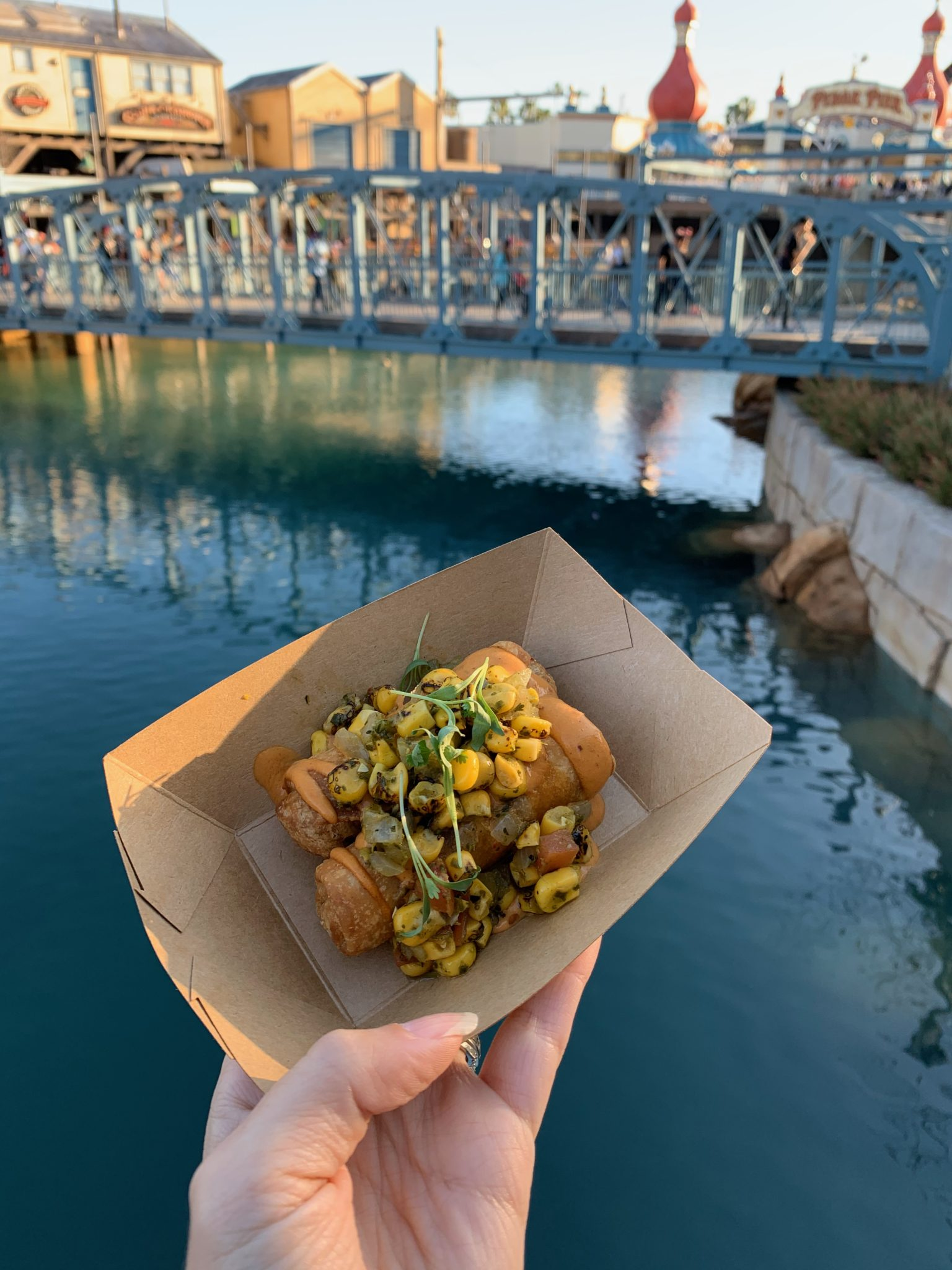 2020 Disney California Adventure Food & Wine Festival guide featured by top US Disney blogger, Marcie and the Mouse: Chimis at Disney California Food & Wine Festival