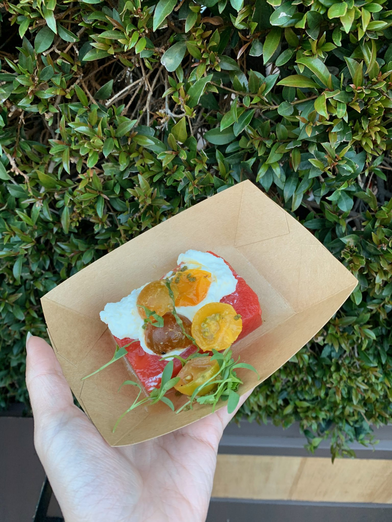 2020 Disney California Adventure Food & Wine Festival guide featured by top US Disney blogger, Marcie and the Mouse: Watermelon Salad at Disney California Food & Wine Festival